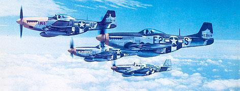 "Republic P-47 ""Thunderbolt"" Img3"